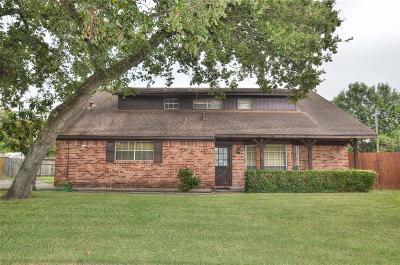 Houston Single Family Home For Sale: 387 Stonehenge Lane