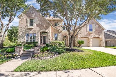 Katy Single Family Home For Sale: 23807 Travis Trl