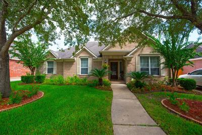Pearland Single Family Home For Sale: 3115 W Oaks Boulevard