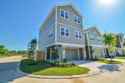 Single Family Home For Sale: 5403 Holguin Hollow Street