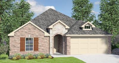 Rosenberg TX Single Family Home For Sale: $255,990