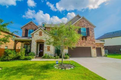 Pearland Single Family Home For Sale: 9612 Live Creek Lane