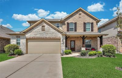 Tomball Single Family Home For Sale: 9114 Springcroft Court