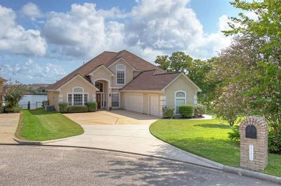 Conroe Single Family Home For Sale: 12575 Longmire Lakeview