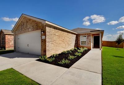 Texas City Single Family Home For Sale: 2219 Lagan Lane