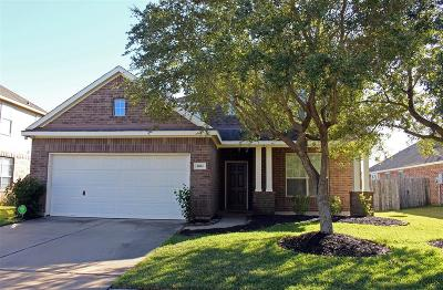 Pearland Single Family Home For Sale: 4804 Cedar Hill Drive