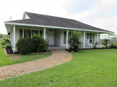 Alvin Single Family Home For Sale: 9720 County Road 200