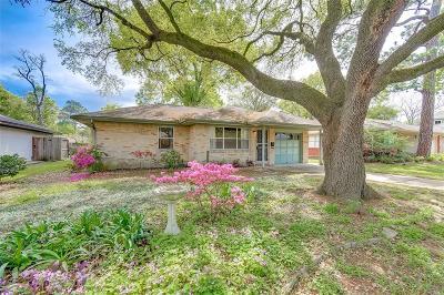 Houston Single Family Home For Sale: 4513 De Lange Lane