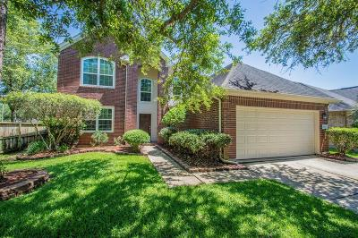 Pearland Single Family Home For Sale: 3803 Paigewood Drive