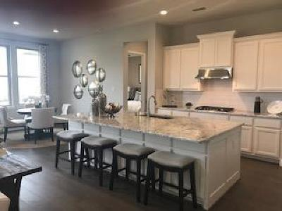 Single Family Home For Sale: 14011 Dunsmore Landing Drive