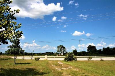 Austin County Farm & Ranch For Sale: 288 Trenckmann Road