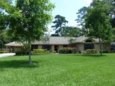 Houston Single Family Home For Sale: 1007 Fairway Farms Lane