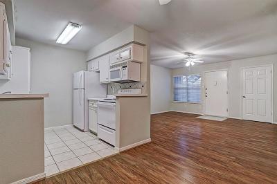Houston Condo/Townhouse For Sale: 1223 Augusta Drive #33