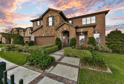 Pearland Single Family Home For Sale: 3803 Canterbury Park Drive