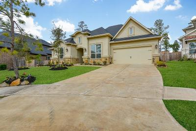 Pinehurst Single Family Home For Sale: 210 Lagarto Court