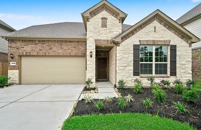 Tomball Single Family Home For Sale: 12015 Mirror Cove Court