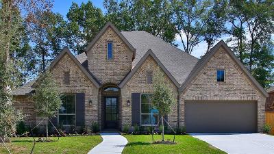 New Caney Single Family Home For Sale: 18847 Collins View Drive
