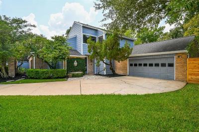 Houston Single Family Home For Sale: 1606 Big Lake Drive