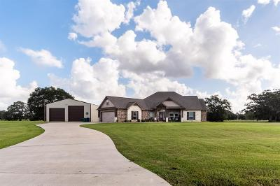 Angleton Single Family Home For Sale: 407 Rodeo Trail