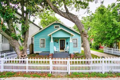 Houston Single Family Home For Sale: 2219 Singleton Street