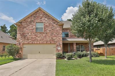 Magnolia Single Family Home For Sale: 119 S Ridge Park Drive