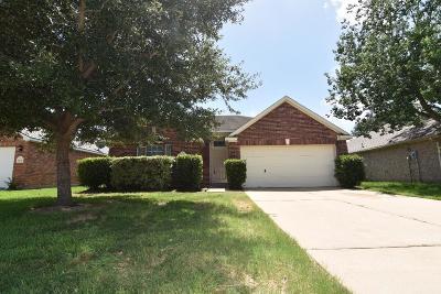 Katy Single Family Home For Sale: 21119 Rushing Creek Lane