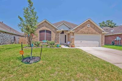 Porter Single Family Home For Sale: 21499 Sullivan Forest Drive