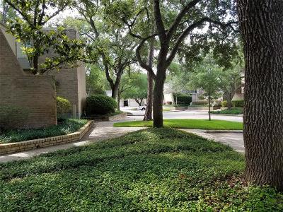 Houston Condo/Townhouse For Sale: 15617 Memorial Drive #18