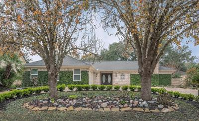Sugar Land Single Family Home For Sale: 810 Chevy Chase Circle