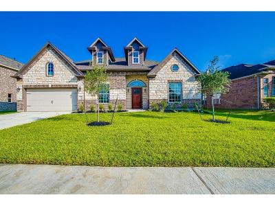Pearland Single Family Home For Sale: 12405 Pepper Creek Lane