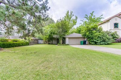 Houston Single Family Home For Sale: 11917 Barryknoll Lane