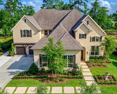 The Woodlands Single Family Home For Sale: 107 E Black Knight