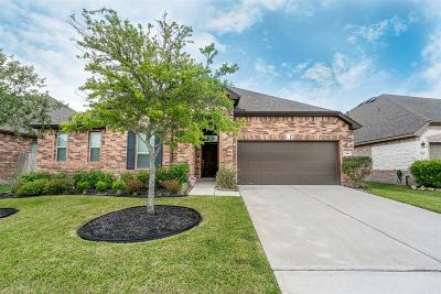 Katy Single Family Home For Sale: 24106 Cane Fields Road