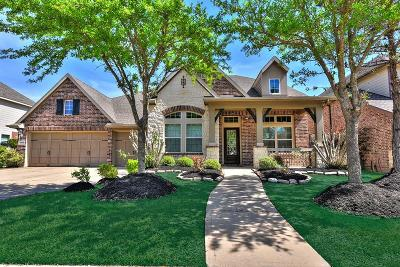 Katy Single Family Home For Sale: 27910 Stoney Cloud Drive