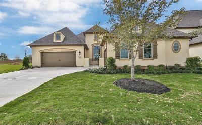 Katy Single Family Home For Sale: 7007 S Savannah Run