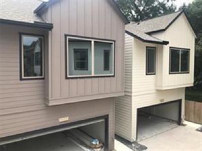 Houston Single Family Home For Sale: 733 Janisch Street
