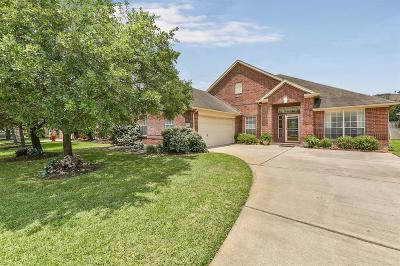 Tomball Single Family Home For Sale: 17702 Forest Haven Trail