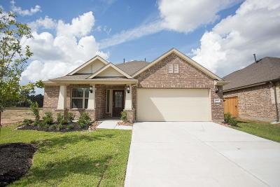 Conroe Single Family Home For Sale: 2947 Twin Cove Court