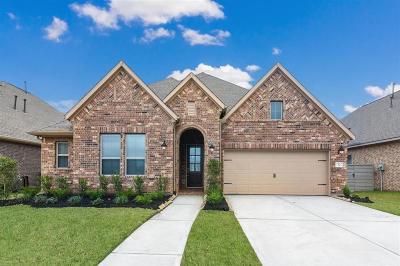 Manvel Single Family Home For Sale: 2522 Deerwood Heights Lane