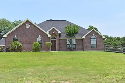 Angleton Single Family Home For Sale: 400 Springfield Trail