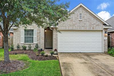 Manvel Single Family Home For Sale: 13 Wheeler Ridge Circle