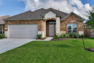 Dickinson Single Family Home For Sale: 4135 E Bayou Maison Circle