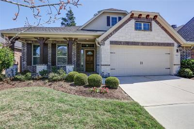 Conroe Single Family Home For Sale: 17211 Rookery Court