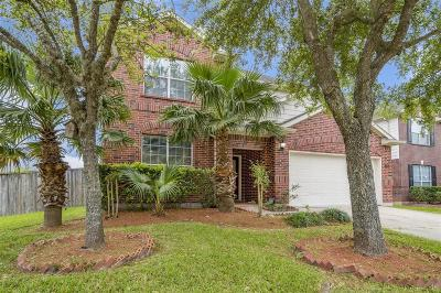 Pearland Single Family Home For Sale: 2924 Ashbrook Lane