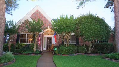 Houston Single Family Home For Sale: 3322 Piney Forest Drive