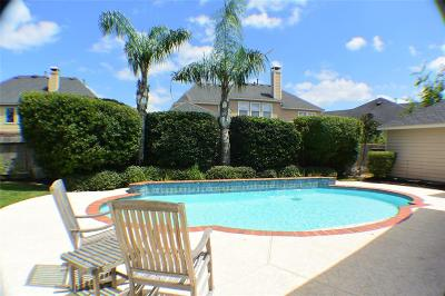 Magnolia, Montgomery, Shenandoah, Tomball, Spring Single Family Home For Sale: 807 Trickling Springs Court