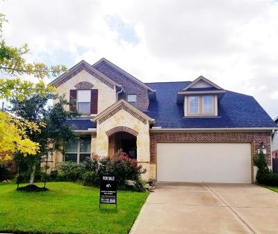 Rosenberg Single Family Home For Sale: 211 Summer Crescent Drive