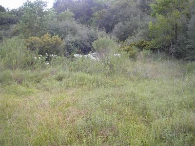Residential Lots & Land For Sale: Lot 4 & 5 County Road 4869
