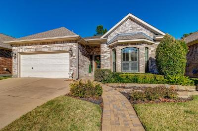 Tomball Single Family Home For Sale: 16263 Jordyn Lake Drive