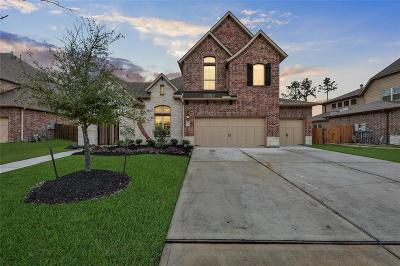 Single Family Home For Sale: 18015 Stari Most